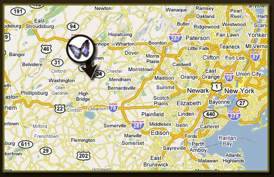 New Jersey Landscaper, Lawn Maintenance Morris County New ... on new jersey county map, essex county nj map, waterloo village nj map, middlesex county, florham park nj map, palisades interstate parkway nj map, mount olive nj map, mercer county, cumberland county, pine brook nj map, warren county nj map, essex county, suffolk county nj map, somerset county, middlesex county nj map, new jersey morris canal map, hudson county, new brunswick, bergen county, passaic county nj map, union county, greenwich township nj map, stafford county nj map, hunterdon county, ocean county, monmouth county, ocean county nj map, nj turnpike map, warren county, plainfield nj map, somerset county map, sussex county, burlington county, sussex county map, sullivan county nj map, passaic county, camden county,